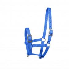 Foal Halter -blue